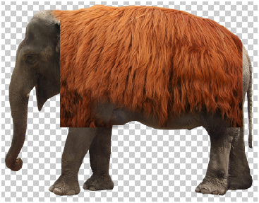 Surreal Fur Elephant in Photoshop Step - 5