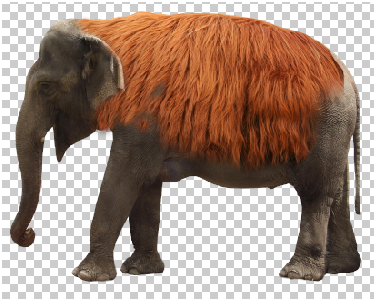 Surreal Fur Elephant in Photoshop Step - 7