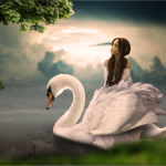 Swan photo manipulation_vfxmaximum.com